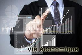 vie-economique