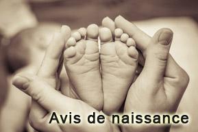 avis_de_naissance